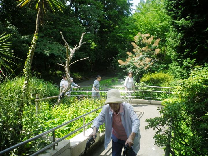 植物園見学♪さいたま浦和館グループホーム